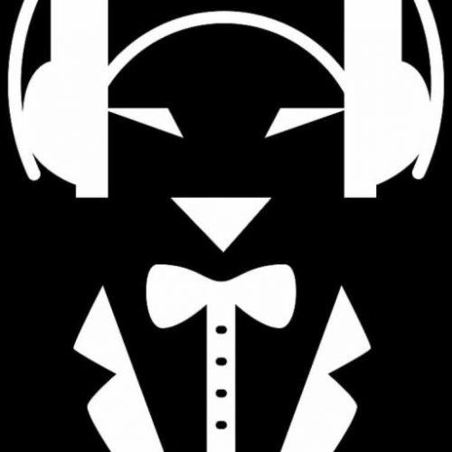 Professional Wedding DJ